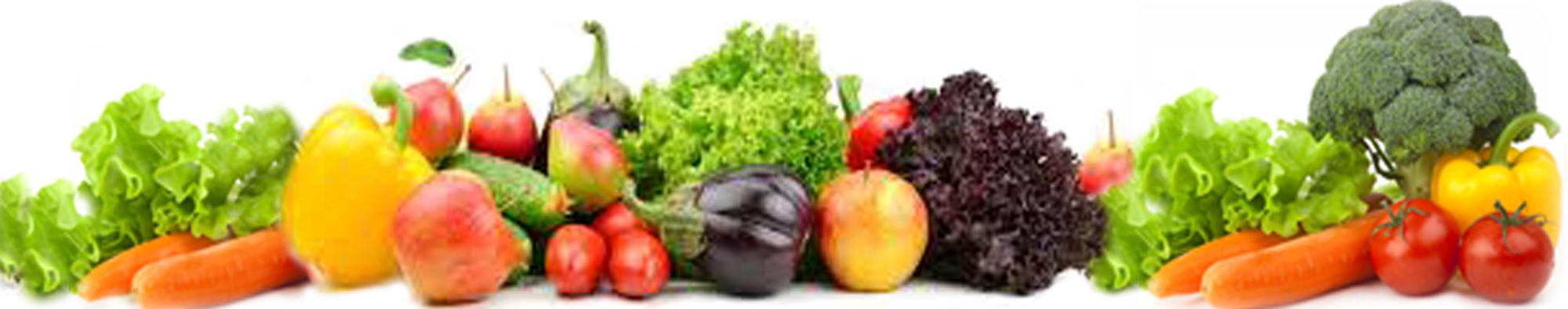 Salad Processing   TS Designs Inc.